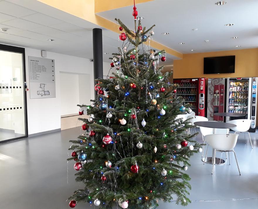 vánoční stromek LF OU