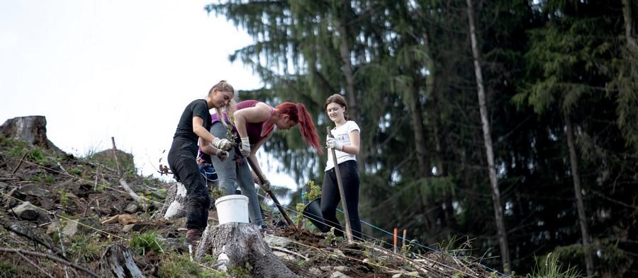 Ostravská univerzita vysadí ovíkendu 5 500 nových stromů